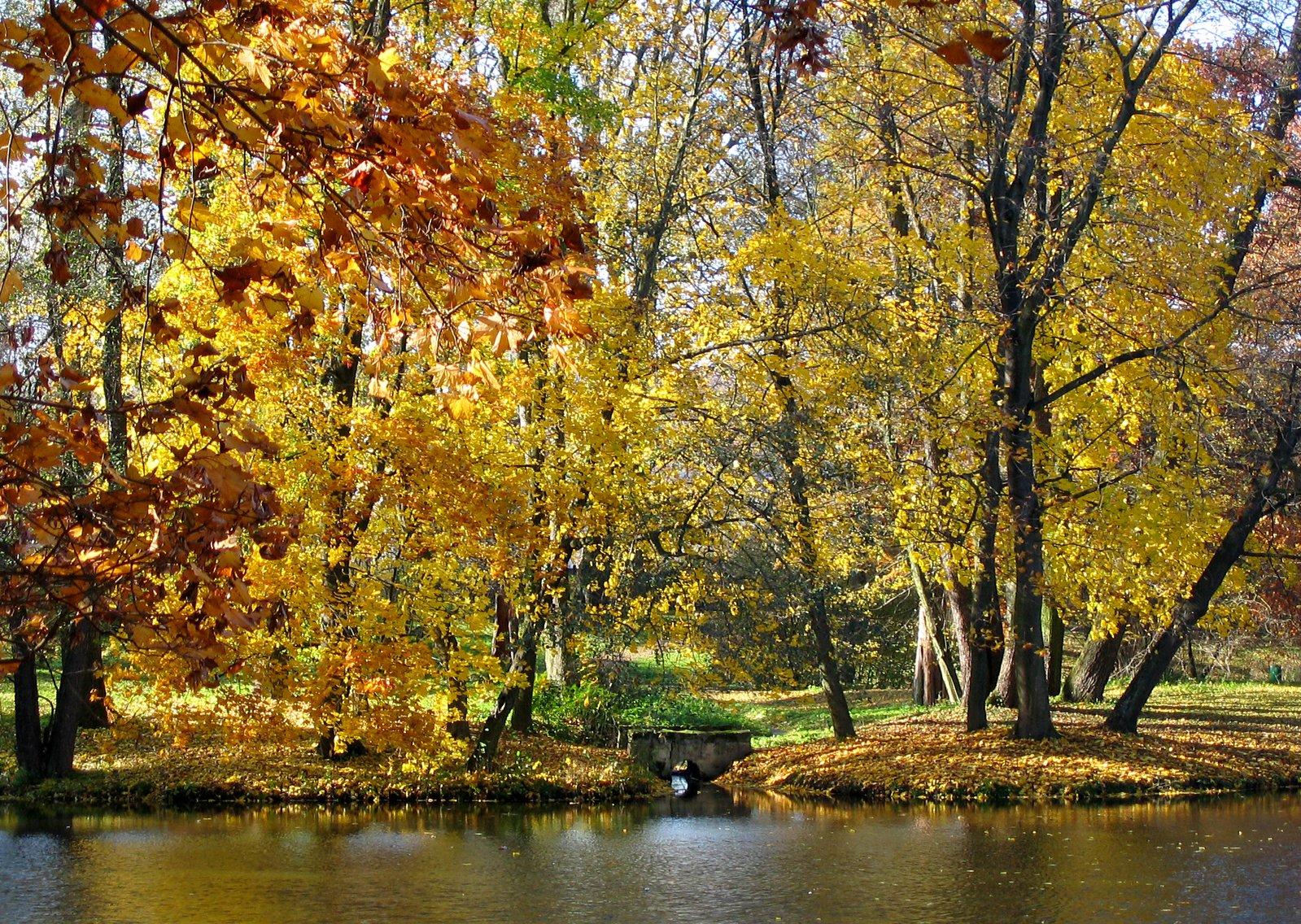 autumn-2-1363375